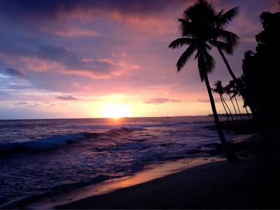 sunset-400.jpg
