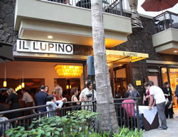イル・ルピーノ・トラットリア&ワインバー /Il Lupino Trattoria & Wine Bar