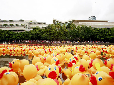 rubber ducky 2013-2.jpg