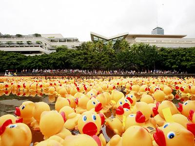 rubber ducky 2016.jpg