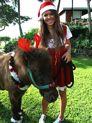 20111219-donkey.jpg