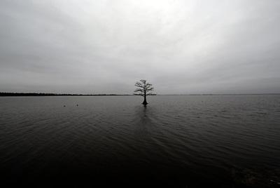 alone00.jpg