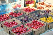 色々な種類のトマト