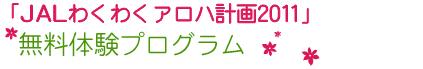 JAL_T011.jpg
