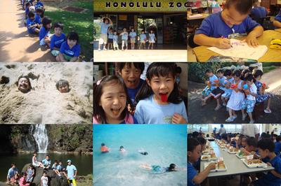 AlohaEikaiwaSummer.jpg