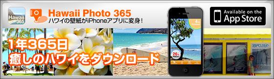 hawaii365_bnr.jpg