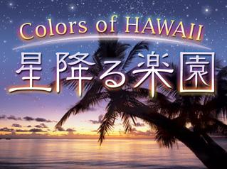 100323_Manten_Hawaii.jpg