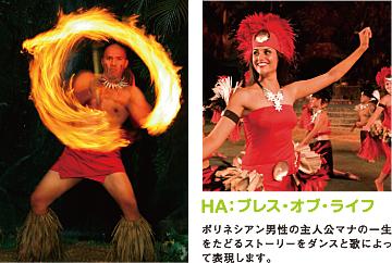 20120403_Odaiba_Hawaii03.jpg