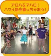 アロハ&マハロ!ハワイ語を習っちゃおう!