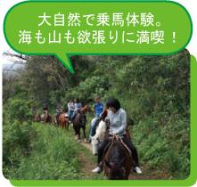大自然で乗馬体験。海も山も欲張りに満喫!