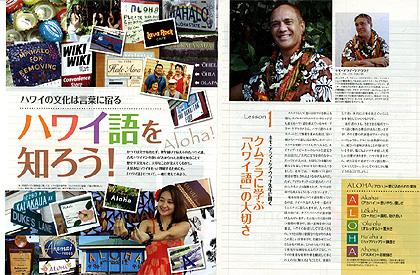 hawaii-go.jpg