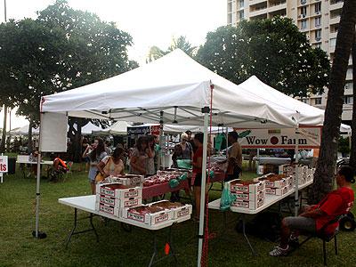 HonoluluFM1.jpg