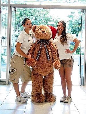 teddy-2.jpg