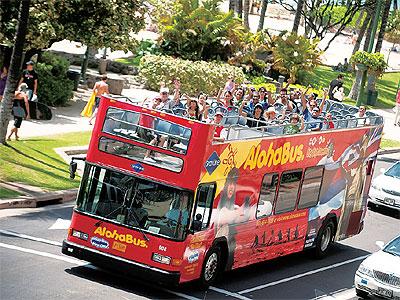 alohabus-1.jpg