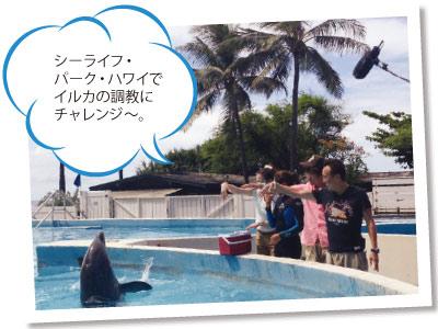 sp_moyamoya_4.jpg