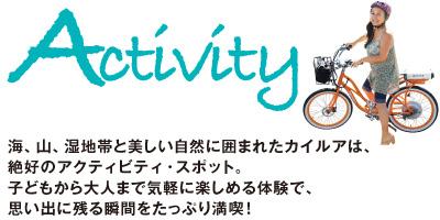 ttl_activity.jpg