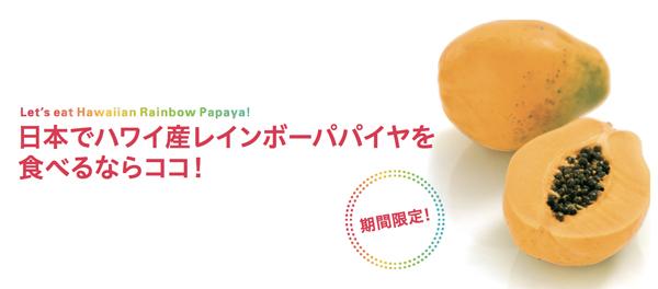 ryuyo_papaya01.jpg