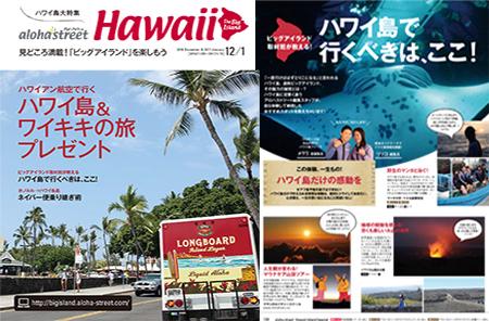 hawaiicover.jpg
