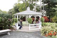 フォスター植物園