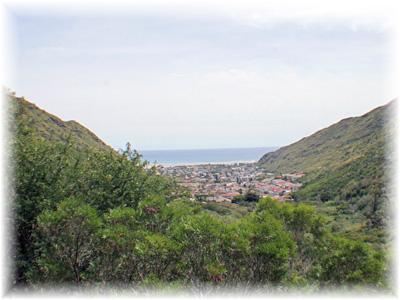 山道から見る景色