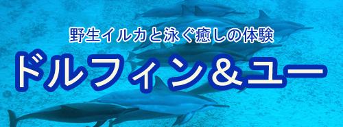 irukaのコピー.jpg