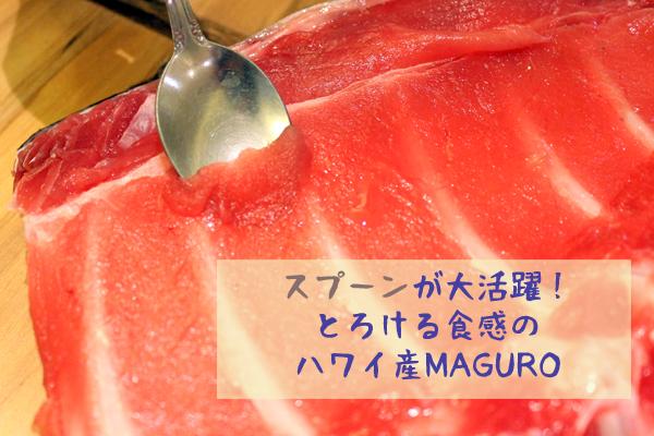 MagokoroT1620.jpg