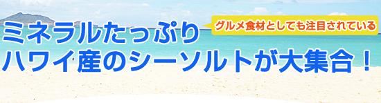 20140116edm_01.jpg