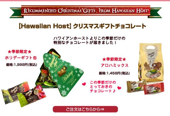 クリスマスギフトチョコレート