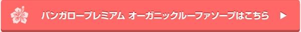 edm_06_R.jpg