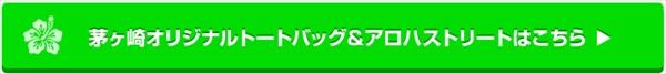 edm08_R.jpg