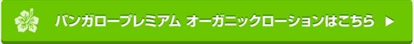 edm_02_R.jpg