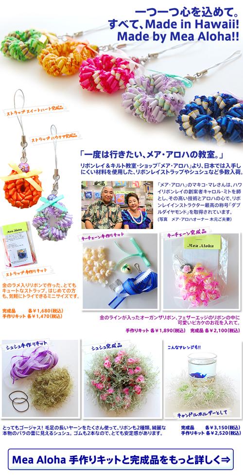 mea_aloha_EDM.jpg