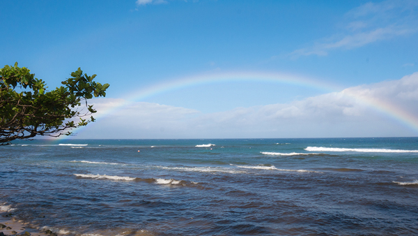 Maui15.jpg