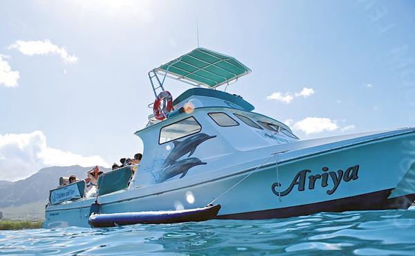 35_6WD_DolphinsandYou_boat.jpg