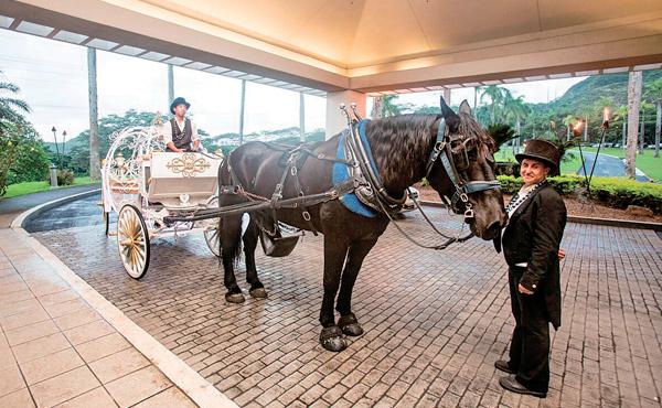 35_6WD_KoolauBallroom_sub_Horse.jpg