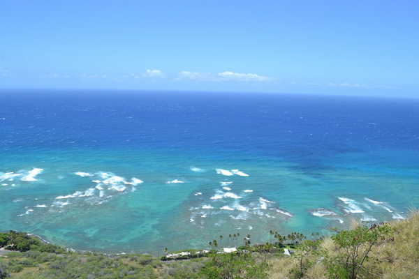 view-from-DH-lookout_Download600.jpg