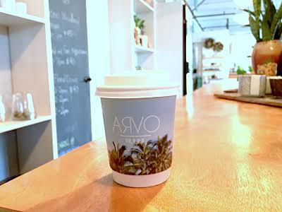 ARVO161.jpg