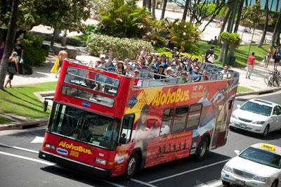 Aloha-Bus Summer.jpg
