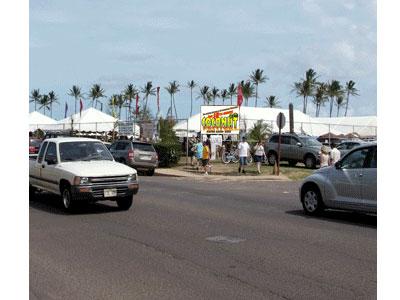 Coconut-Festival.jpg