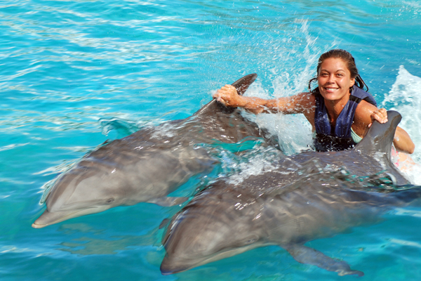 DolphinRoyalSwim1.jpg