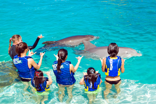 DolphinSwimAdventure2.jpg