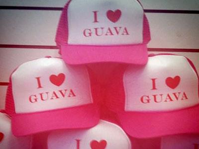 GuavaFeb2.jpg