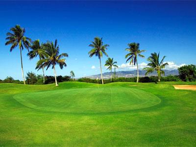 HawaiiPrinceFeb2.jpg