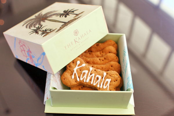 Kahala-Dog-Biscuits1.jpg