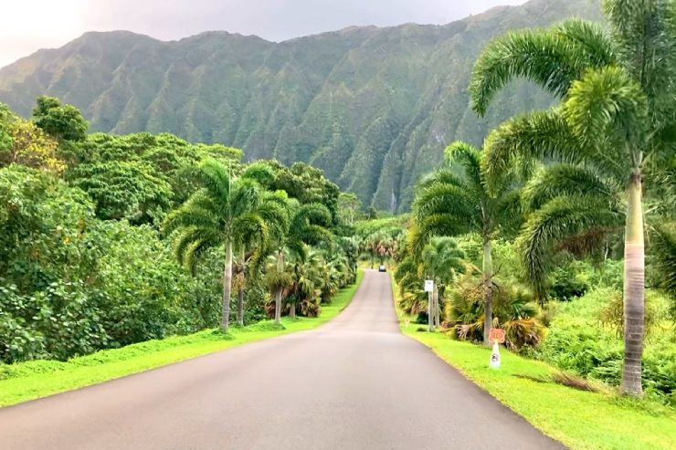 メレを旅するハワイ〜カネオヘ・ドライブ
