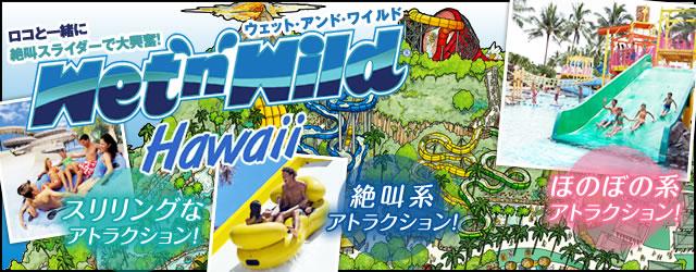 大人から子どもまで楽しめる人気の大型ウォーター・パーク!