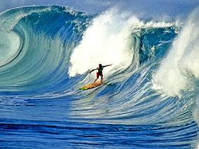 ハワイのアートを盛り上げるロコアーティスト
