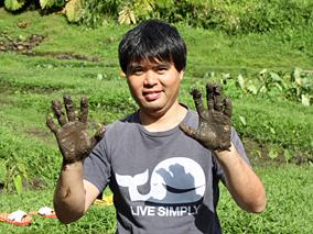 ハワイの食の源、タロイモを掘って食べる