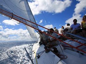 ハワイまで4000キロ航海レースに日本勢参戦