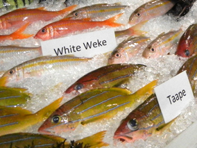 ハワイの釣り好きが大集合!